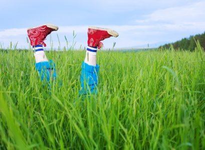 Legs, in a green grass under the blue sky